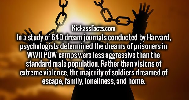 In a study of 640 dream journals conducted by Harvard, psychologists determined the dreams of prisoners in WWII POW camps were less aggressive than the standard male population. Rather than visions of extreme violence, the majority of soldiers dreamed of escape, family, loneliness, and home.