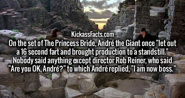 """On the set of The Princess Bride, André the Giant once """"let out a 16 second fart and brought production to a standstill."""" Nobody said anything except director Rob Reiner, who said """"Are you OK, André?"""" to which André replied, """"I am now boss."""""""