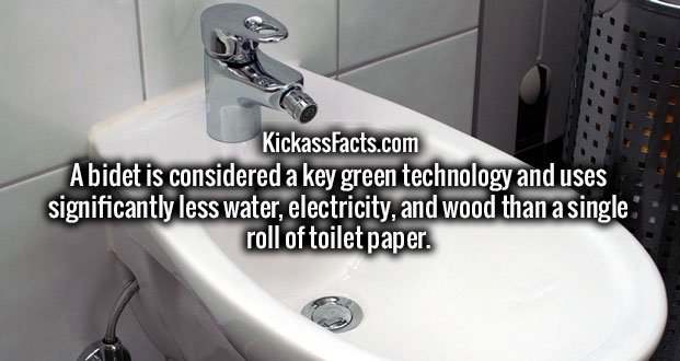 A bidet is considered a key green technology and uses significantly less water, electricity, and wood than a single roll of toilet paper.