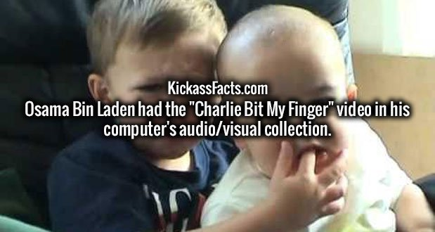 """Osama Bin Laden had the """"Charlie Bit My Finger"""" video in his computer's audio/visual collection."""
