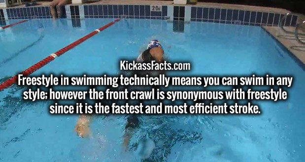 Freestyle in swimming technically means you can swim in any style; however the front crawl is synonymous with freestyle since it is the fastest and most efficient stroke.