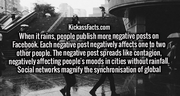 When it rains, people publish more negative posts on Facebook. Each negative post negatively affects one to two other people. The negative post spreads like contagion, negatively affecting people's moods in cities without rainfall. Social networks magnify the synchronisation of global moods.