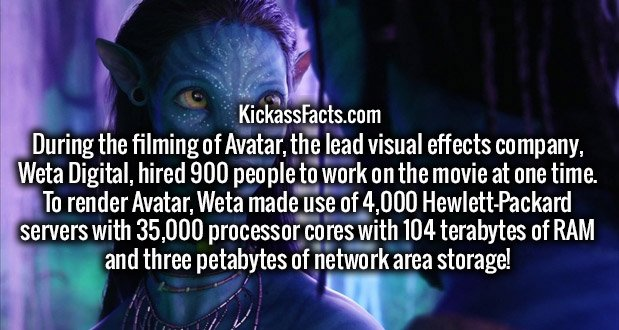 During the filming of Avatar, the lead visual effects company, Weta Digital, hired 900 people to work on the movie at one time. To render Avatar, Weta made use of 4,000 Hewlett-Packard servers with 35,000 processor cores with 104 terabytes of RAM and three petabytes of network area storage!