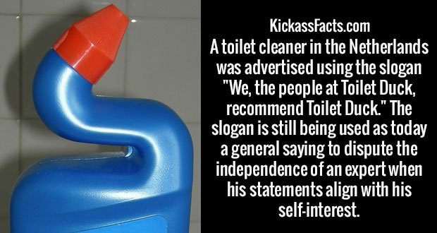 "A toilet cleaner in the Netherlands was advertised using the slogan ""We, the people at Toilet Duck, recommend Toilet Duck."" The slogan is still being used as today a general saying to dispute the independence of an expert when his statements align with his self-interest."