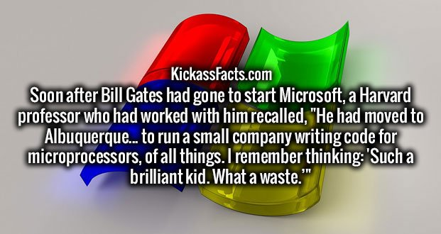 """Soon after Bill Gates had gone to start Microsoft, a Harvard professor who had worked with him recalled, """"He had moved to Albuquerque... to run a small company writing code for microprocessors, of all things. I remember thinking: 'Such a brilliant kid. What a waste.'"""""""