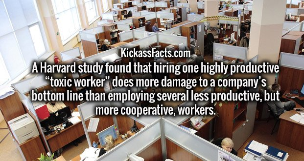 """A Harvard study found that hiring one highly productive """"toxic worker"""" does more damage to a company's bottom line than employing several less productive, but more cooperative, workers."""