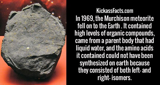 In 1969, the Murchison meteorite fell on to the Earth. It contained high levels of organic compounds, came from a parent body that had liquid water, and the amino acids it contained could not have been synthesized on earth because they consisted of both left- and right- isomers.