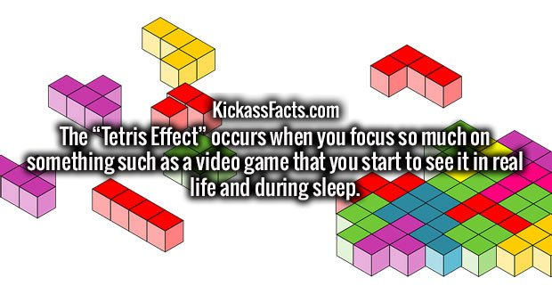 "The ""Tetris Effect"" occurs when you focus so much on something such as a video game that you start to see it in real life and during sleep."