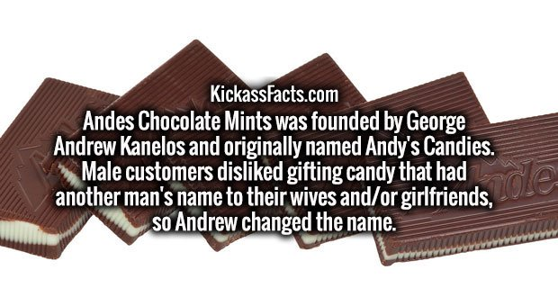 Andes Chocolate Mints was founded by George Andrew Kanelos and originally named Andy's Candies. Male customers disliked gifting candy that had another man's name to their wives and/or girlfriends, so Andrew changed the name.