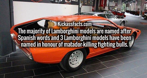 The majority of Lamborghini models are named after Spanish words and 3 Lamborghini models have been named in honour of matador-killing fighting bulls.