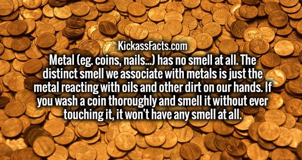 Metal (eg. coins, nails...) has no smell at all. The distinct smell we associate with metals is just the metal reacting with oils and other dirt on our hands. If you wash a coin thoroughly and smell it without ever touching it, it won't have any smell at all.