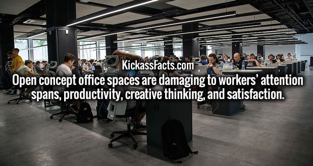 Open concept office spaces are damaging to workers' attention spans, productivity, creative thinking, and satisfaction.