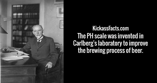 The PH scale was invented in Carlberg's laboratory to improve the brewing process of beer.