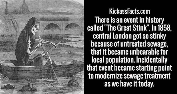 """There is an event in history called """"The Great Stink"""". In 1858, central London got so stinky because of untreated sewage, that it became unbearable for local population. Incidentally that event became starting point to modernize sewage treatment as we have it today."""