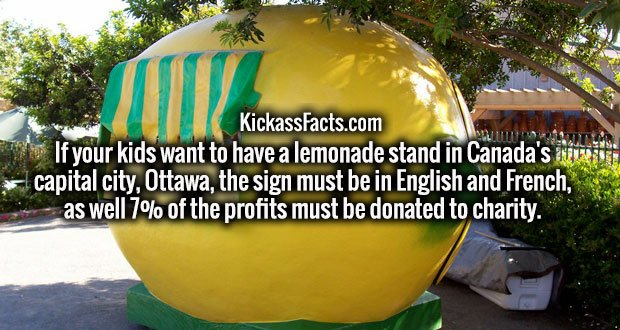 If your kids want to have a lemonade stand in Canada's capital city, Ottawa, the sign must be in English and French, as well 7% of the profits must be donated to charity.