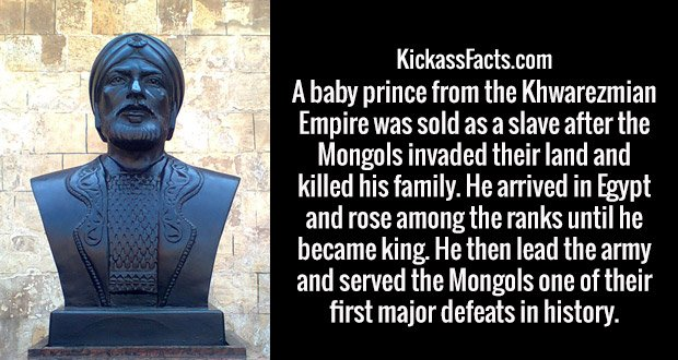 A baby prince from the Khwarezmian Empire was sold as a slave after the Mongols invaded their land and killed his family. He arrived in Egypt and rose among the ranks until he became king. He then lead the army and served the Mongols one of their first major defeats in history.