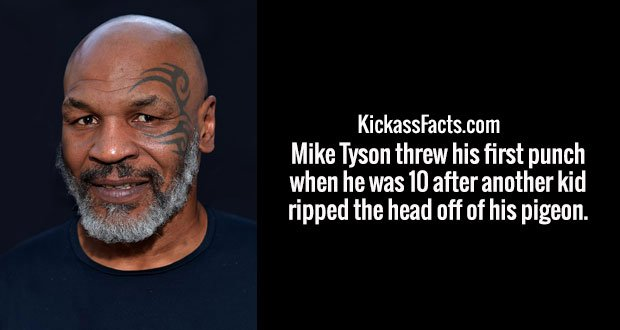 Mike Tyson threw his first punch when he was 10 after another kid ripped the head off of his pigeon.