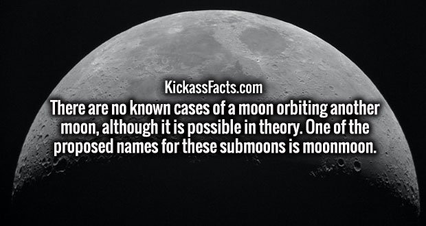There are no known cases of a moon orbiting another moon, although it is possible in theory. One of the proposed names for these submoons is moonmoon.
