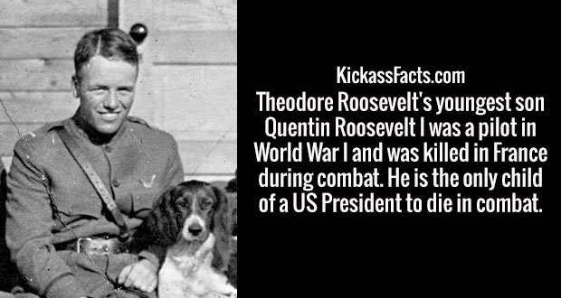Theodore Roosevelt's youngest son Quentin Roosevelt I was a pilot in World War I and was killed in France during combat. He is the only child of a US President to die in combat.