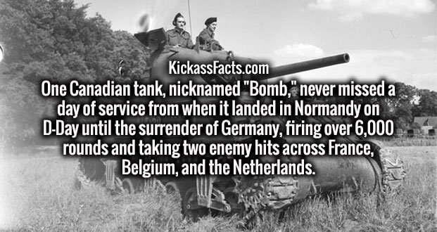 "One Canadian tank, nicknamed ""Bomb,"" never missed a day of service from when it landed in Normandy on D-Day until the surrender of Germany, firing over 6,000 rounds and taking two enemy hits across France, Belgium, and the Netherlands."