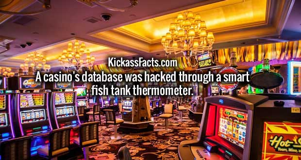 A casino's database was hacked through a smart fish tank thermometer.