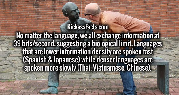 No matter the language, we all exchange information at 39 bits/second, suggesting a biological limit. Languages that are lower information density are spoken fast (Spanish & Japanese) while denser languages are spoken more slowly (Thai, Vietnamese, Chinese).