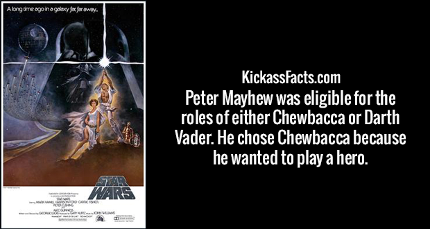 Peter Mayhew was eligible for the roles of either Chewbacca or Darth Vader. He chose Chewbacca because he wanted to play a hero.