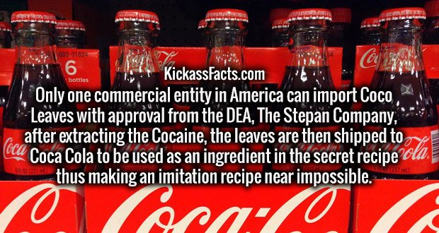 Only one commercial entity in America can import Coco Leaves with approval from the DEA, The Stepan Company, after extracting the Cocaine, the leaves are then shipped to Coca Cola to be used as an ingredient in the secret recipe thus making an imitation recipe near impossible.