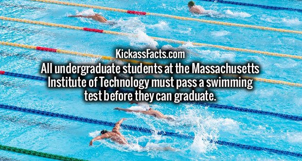 All undergraduate students at the Massachusetts Institute of Technology must pass a swimming test before they can graduate.