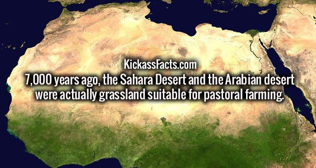 7,000 years ago, the Sahara Desert and the Arabian desert were actually grassland suitable for pastoral farming.