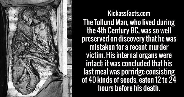 The Tollund Man, who lived during the 4th Century BC, was so well preserved on discovery that he was mistaken for a recent murder victim. His internal organs were intact; it was concluded that his last meal was porridge consisting of 40 kinds of seeds, eaten 12 to 24 hours before his death.