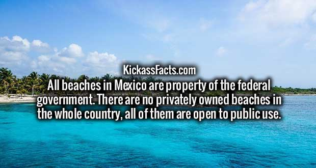 All beaches in Mexico are property of the federal government. There are no privately owned beaches in the whole country, all of them are open to public use.