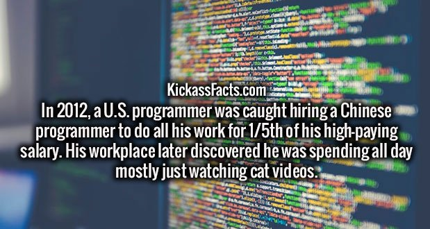 In 2012, a U.S. programmer was caught hiring a Chinese programmer to do all his work for 1/5th of his high-paying salary. His workplace later discovered he was spending all day mostly just watching cat videos.