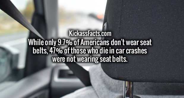 While only 9.7% of Americans don't wear seat belts, 47% of those who die in car crashes were not wearing seat belts.