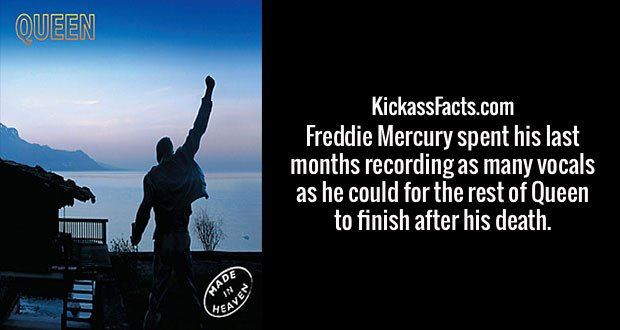 Freddie Mercury spent his last months recording as many vocals as he could for the rest of Queen to finish after his death.