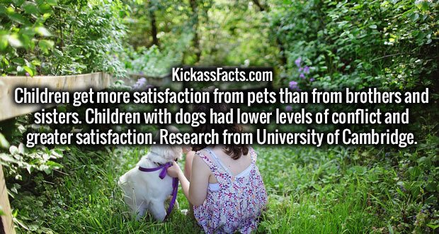 Children get more satisfaction from pets than from brothers and sisters. Children with dogs had lower levels of conflict and greater satisfaction. Research from University of Cambridge.