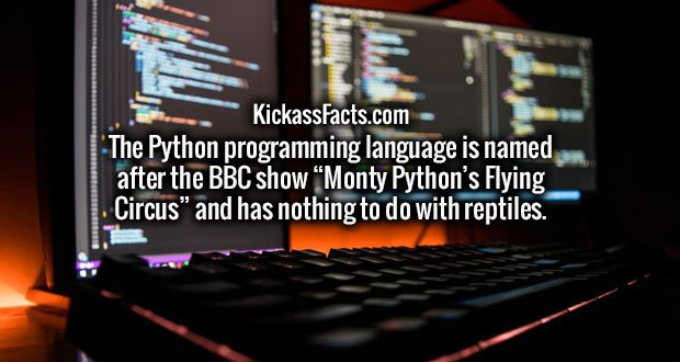 """The Python programming language is named after the BBC show """"Monty Python's Flying Circus"""" and has nothing to do with reptiles."""