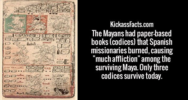 "The Mayans had paper-based books (codices) that Spanish missionaries burned, causing ""much affliction"" among the surviving Maya. Only three codices survive today."