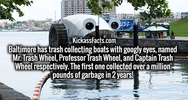 Baltimore has trash collecting boats with googly eyes, named Mr. Trash Wheel, Professor Trash Wheel, and Captain Trash Wheel respectively. The first one collected over a million pounds of garbage in 2 years!