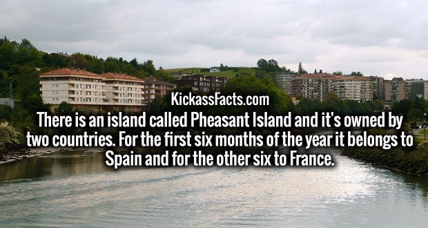 There is an island called Pheasant Island and it's owned by two countries. For the first six months of the year it belongs to Spain and for the other six to France.