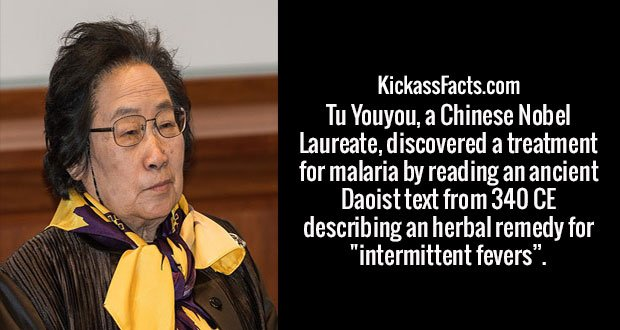 """Tu Youyou, a Chinese Nobel Laureate, discovered a treatment for malaria by reading an ancient Daoist text from 340 CE describing an herbal remedy for """"intermittent fevers""""."""