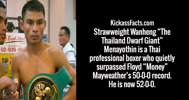 "Strawweight Wanheng ""The Thailand Dwarf Giant"" Menayothin is a Thai professional boxer who quietly surpassed Floyd ""Money"" Mayweather's 50-0-0 record. He is now 52-0-0."