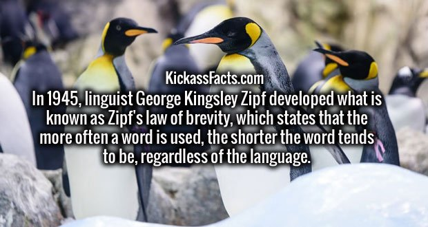 In 1945, linguist George Kingsley Zipf developed what is known as Zipf's law of brevity, which states that the more often a word is used, the shorter the word tends to be, regardless of the language.