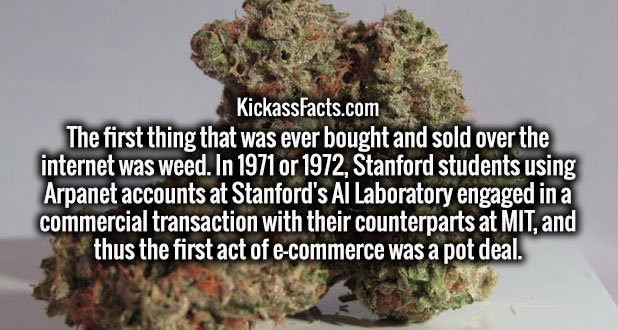 The first thing that was ever bought and sold over the internet was weed. In 1971 or 1972, Stanford students using Arpanet accounts at Stanford's AI Laboratory engaged in a commercial transaction with their counterparts at MIT, and thus the first act of e-commerce was a pot deal.