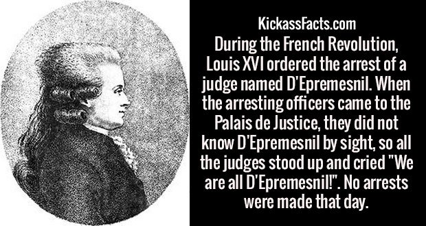 """During the French Revolution, Louis XVI ordered the arrest of a judge named D'Epremesnil. When the arresting officers came to the Palais de Justice, they did not know D'Epremesnil by sight, so all the judges stood up and cried """"We are all D'Epremesnil!"""". No arrests were made that day."""