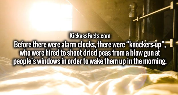"Before there were alarm clocks, there were ""knockers-up"", who were hired to shoot dried peas from a blow gun at people's windows in order to wake them up in the morning."