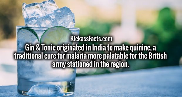 Gin & Tonic originated in India to make quinine, a traditional cure for malaria more palatable for the British army stationed in the region.