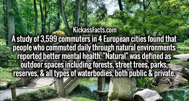 """A study of 3,599 commuters in 4 European cities found that people who commuted daily through natural environments reported better mental health. """"Natural"""" was defined as outdoor spaces including forests, street trees, parks, reserves, & all types of waterbodies, both public & private."""