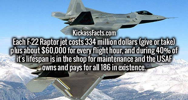 Each F-22 Raptor jet costs 334 million dollars (give or take) plus about $60,000 for every flight hour, and during 40% of it's lifespan is in the shop for maintenance and the USAF owns and pays for all 186 in existence.