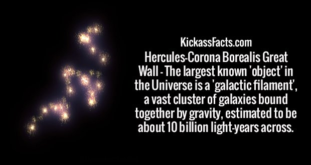 Hercules-Corona Borealis Great Wall - The largest known 'object' in the Universe is a 'galactic filament', a vast cluster of galaxies bound together by gravity, estimated to be about 10 billion light-years across.